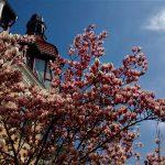 Semana Santa en Berlín: ¿qué hacer?