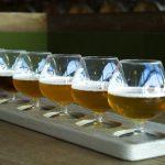 Tour della birra artigianale Berlino