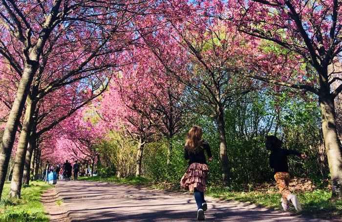 Visitare Berlino durante le vacanze di Pasqua